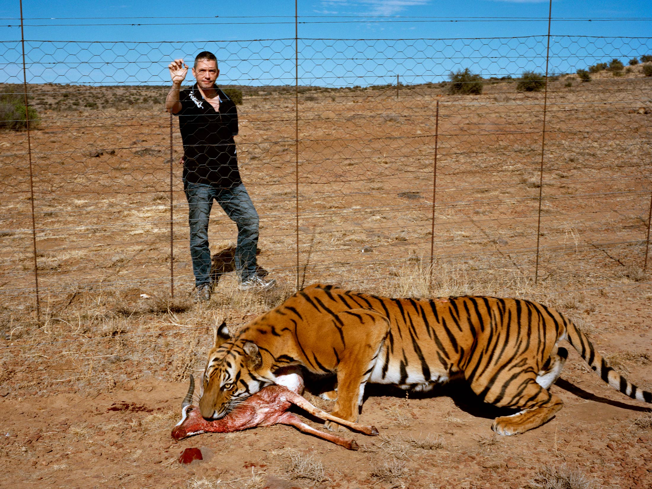 the south china tiger is functionally extinct stuart bray has 19