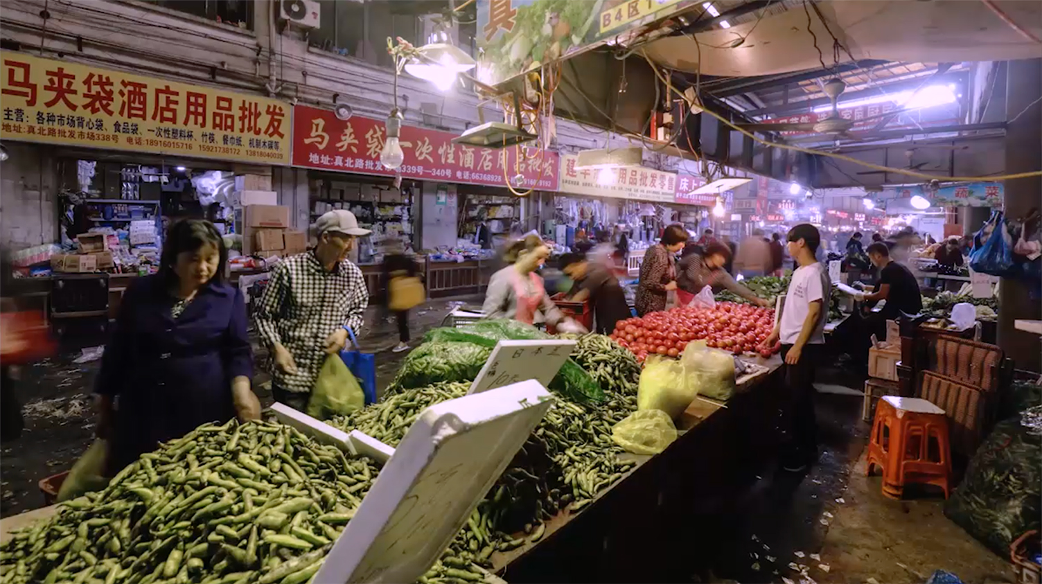 Farming the World: China's Epic Race to Avoid a Food Crisis