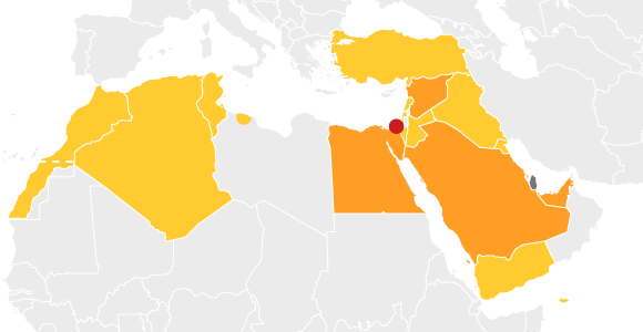 Muslim Brotherhood Is at the Heart of Gulf Standoff With Qatar