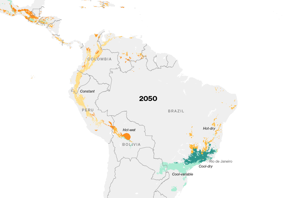 Map of Brazil showing suitable areas for growing coffee shrinking by 2050