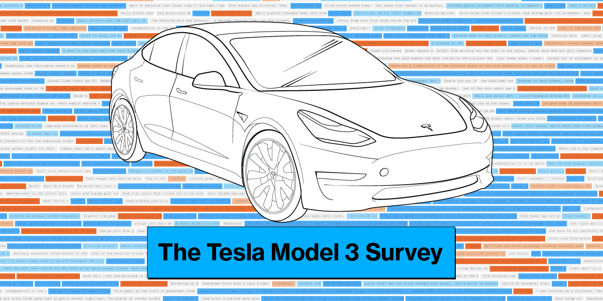 Tesla Model 3 Owners Tell Us What Elon Musk Got Right and Wrong