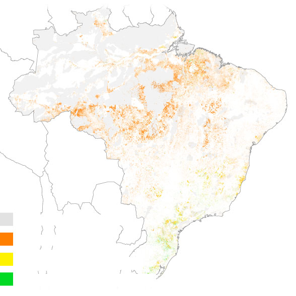 Why the Amazon Rainforest Is on Fire—and Why it's Getting Worse
